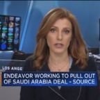 Endeavor working to pull out of Saudi Arabia deal, says s...