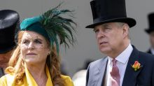 Sarah Ferguson says Prince Andrew is 'a wonderful man who has gone through enormous pain'