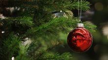 Qual é o dia certo para montar a árvore de Natal?