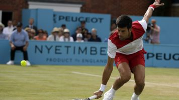 Djokovic to face Cilic in Queen's Club final