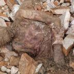 Mummified body of the Shah of Iran 'found in Tehran' construction site