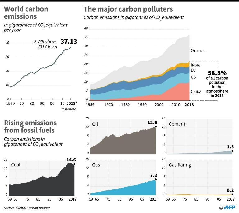 Annual global carbon emissions, by major country and fuel source, according to data from Global Carbon Budget (AFP Photo/Sophie RAMIS)