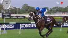 Winx triumphs in penultimate race, extends winning streak