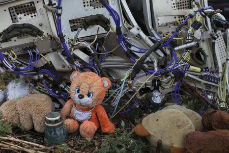 A teaddy bear is placed next to wreckage at the site of the downed Malaysia Airlines flight MH17, near the village of Hrabove (Grabovo) in Donetsk region, eastern Ukraine September 9, 2014. REUTERS/Marko Djurica