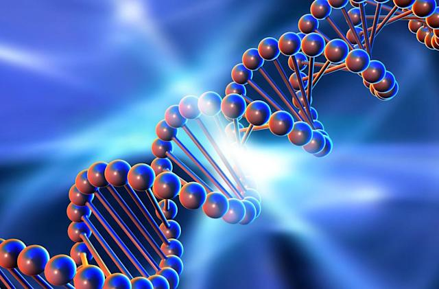 Scientists want to perfect humanity with synthetic DNA