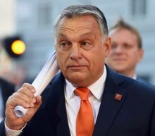 Europe will be destroyed by Orban's authoritarianism – unless it unites to stop him