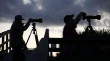 Close encounters? SpaceX satellites spark Dutch UFO frenzy