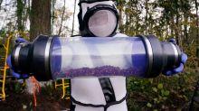 Ninho de 'vespas gigantes assassinas' é encontrado e destruído nos EUA