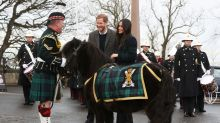 Meghan Markle laughs as Shetland pony playfully nips Prince Harry's hand on Edinburgh visit