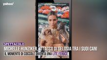 Michelle Hunziker, attacco di gelosia tra i suoi cani