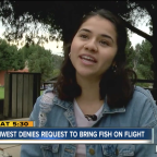 Southwest Airlines bans college student's pet fish from plane