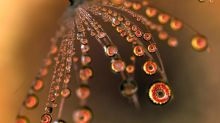 Beautiful water droplet photos captured with creative technique