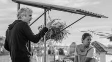 Colonia Roma de la Ciudad de México tendrá su propia alfombra roja de los Oscar