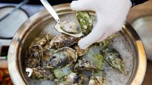 Japan's General Oyster Said to Draw Deal Interest From China