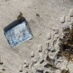 Over 30 kilograms of cocaine worth $1.2 million wash ashore during turtle nesting survey at Cape Canaveral