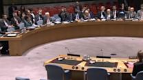 U.N. Security Council adopts Syria aid access resolution