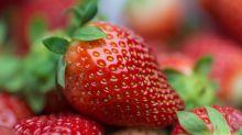 Quiz: Obst, Gemüse oder Nuss?