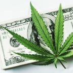 Could These 3 Marijuana Stocks Be on Their Way to $100 Billion Market Caps?