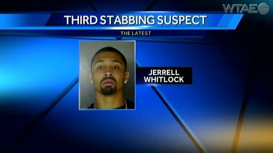 'Aggressive search' continues for Mike Adams stabbing suspect
