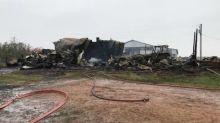 Calf dies in fire at Cardross farm