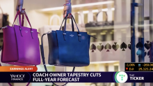 Tapestry Stock Stumbles: What It Could Mean for Coach and Kate Spade