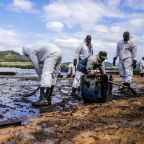 They raced to stop the oil spill. The island's pristine coastline may be beyond help.