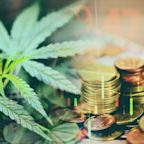 This Unusual Pot Stock Is Thriving Amid the Cannabis Boom