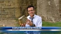 Cities disagree over Purple People Bridge repairs