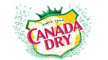 Canada Dry Ginger Ale: Relax Harder From That 4 -Letter Word- Busy