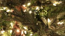 Tips to help your Christmas tree last longer