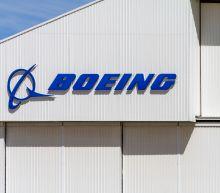 Boeing sees steep profit drop on 737 Max 8 Groundings