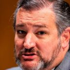 Ted Cruz Is Fighting with Seth Rogen on Twitter. Here's Why That Is Both Hilarious and Worrisome.