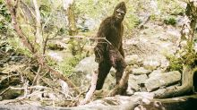 Did Bigfoot cause a car crash in Idaho?