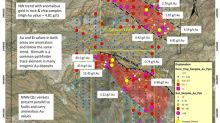 Colibri Selects Drillers for Maiden Drill Program at Evelyn Gold Project