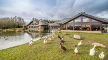 Why Tebay is 'the motorway service station from heaven'