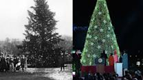 Lighting the National Christmas Tree: A 91-year evolution