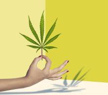 Wall Street's first cannabis analyst names her top US marijuana stocks
