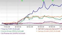 Marijuana Stocks Plummet to Record Low: What's Next?