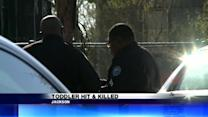 Toddler Hit and Killed