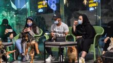 Saudi Arabia is Changing, First Dog Cafe in the Conservative Kingdom is a Testimony