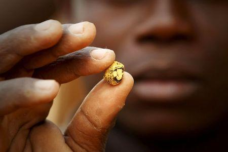 A gold prospector holds a gold nugget between his fingers at a gold mine near the village of Gamina in western Ivory Coast, March 16, 2015. REUTERS/Luc Gnago