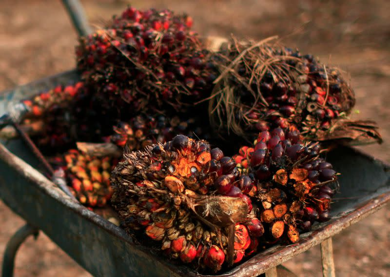 India's September palm oil imports slump 27% on tepid demand - trade body