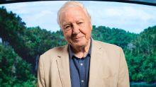 David Attenborough to receive lifetime achievement award