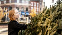 'Great Recession' a decade ago is one reason your Christmas tree will cost more this year