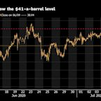 Oil Holds Near $41 With U.S. Crude Inventories Seen Shrinking