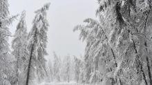 Sestriere, cade e sbatte la testa sulla barriera della pista: muore sciatore 31enne