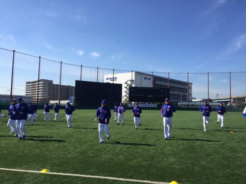 名家論壇》瘦菊子/台灣棒球的分裂