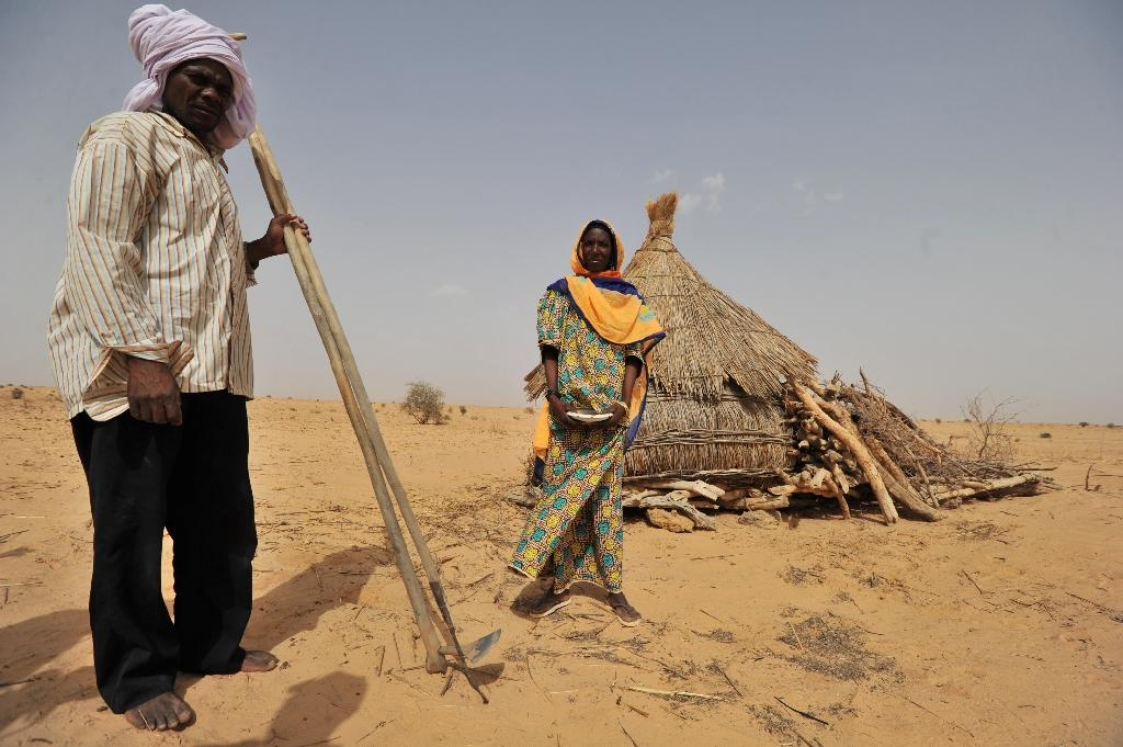 As a result of the uncontrolled felling of trees, desert sands have engulfed once arable land in the arid country whose northern region lies beneath Sahara desert sands (AFP Photo/Issouf Sanogo)