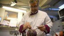 法國餐廳設計「冠狀病毒」甜品 你夠唔夠膽咬?