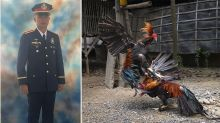 Police officer killed by rooster during illegal cockfight raid